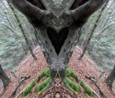 20150823_krndija_025