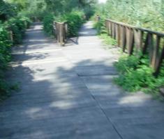 20200823_mocvara_trail_058