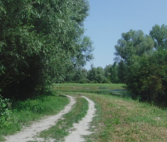20200823_mocvara_trail_073