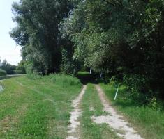 20200823_mocvara_trail_074