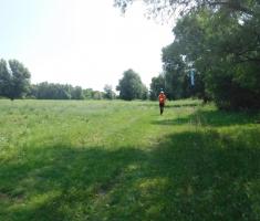 20200823_mocvara_trail_075