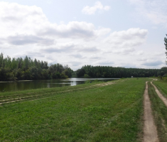 20200823_mocvara_trail_076