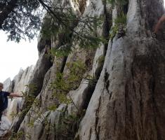 samarske_stijene_034