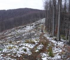 20171223_bozicni_krndija_trail_045