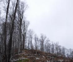 20171223_bozicni_krndija_trail_046