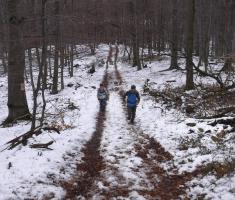 20171223_bozicni_krndija_trail_048