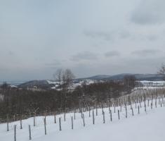 20180225_pozeska_gora_145a