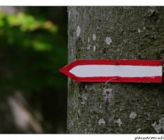 Pratite oznake
