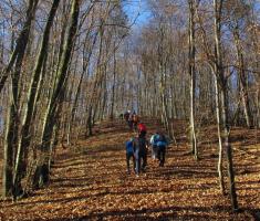 20161226_bozicni_krndija_trail_028