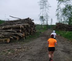 20190427_jugovaca_trail_061
