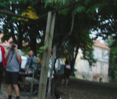 20190928_podunavlje_trail_065
