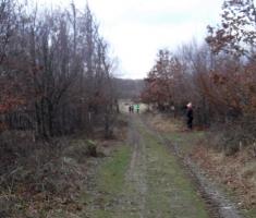 20191228_bozicni_krndija_trail_107