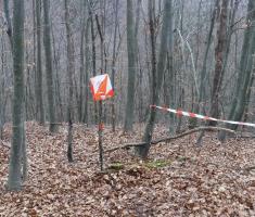 20191228_bozicni_krndija_trail_115