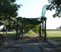 20180929_podunavlje_trail_015