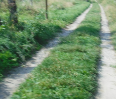 20180929_podunavlje_trail_075