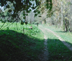 20180929_podunavlje_trail_076