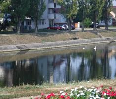20190831_vinkovacki_polumaraton_029