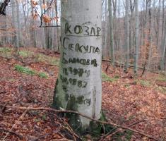 20150118_papuk_31km_086